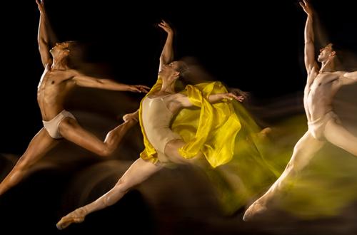 dancealive-athlete-500×330