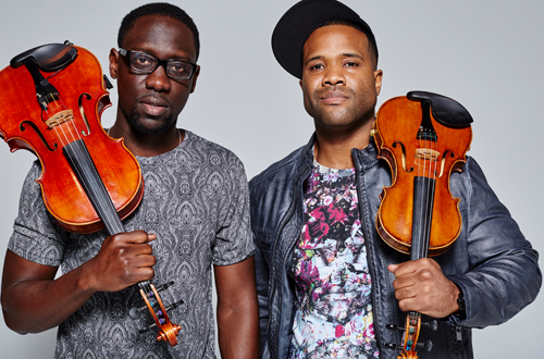 blackviolin-500×330-1